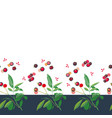 christmas border with rose plant and buds vector image vector image