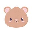 cute bear face animal cartoon isolated icon vector image