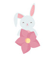 cute rabbit with flower character vector image