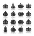 halloween black pumpkin with reflection icon set vector image