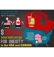 Obesity Infographics vector image