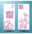 Orchids on the banner for design vector image vector image