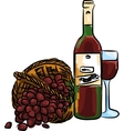 red grape with bottle red wine and vector image