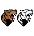 roaring angry grizzly bear mascot head vector image vector image
