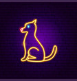 dog neon sign vector image