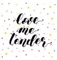 Love me tender Lettering vector image vector image