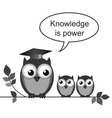 OWL TEACHER POWER vector image vector image