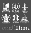 set of chess labels badges and design elements vector image