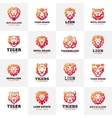 Tiger and lions face logo badge vector image vector image