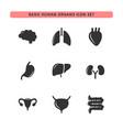 basic human organs icon set vector image