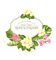beautiful card with a wreath of tropical flowers vector image