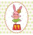Circus rabbit on a pedestal vector image vector image