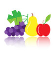 colorful pear apple grapes icon with reflection vector image