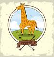 cute giraffe cartoon vector image vector image