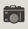 hanging vintage camera vector image vector image
