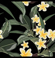 plumeria tropical exotic flower seamless pattern vector image vector image