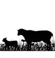 Sheep and lamb in the meadow vector image vector image