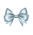 Shiny Light Blue Satin Gift Bow Close up vector image vector image