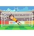 Soccer football goalkeeper catching ball in goal vector image vector image