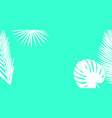white palm leaves silhouette on a bright blue vector image