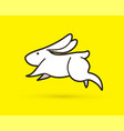 white rabbit jumping graphic vector image vector image