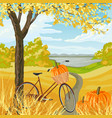 autumn landscape with with bicycle and pumpkins vector image vector image