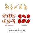 sun-dried fruit vector image