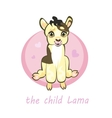 Sweetie baby llamas newborn sitting vector image vector image