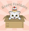 cat in box happy biirthday vector image vector image