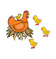 flat hand drawn chicken in nest chicks set vector image vector image