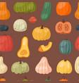 fresh pumpkin seamless pattern background seasonal vector image vector image