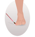 pedicure foot and brush vector image