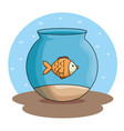 pet fish in aquarium vector image