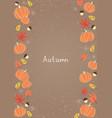 pumpkin leaves nut and flower flat frame vector image