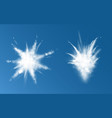 snow powder white explosion set top and side view vector image vector image