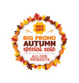 50 off big promo autumn special sale badge with vector image vector image
