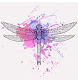 dragonfly with watercolor splash vector image
