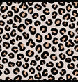 leopard seamless pattern hand drawn elegant vector image