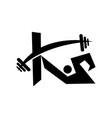 letter k fitness vector image