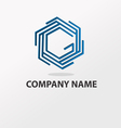 logo with letter g vector image vector image