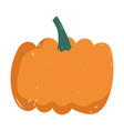 pumpkin fresh vegetable food icon isolated design vector image vector image