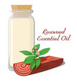 rosewood essential oil vector image vector image