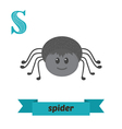 Spider S letter Cute children animal alphabet in vector image vector image