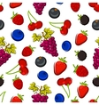 Summer fruits and berries seamless pattern vector image vector image