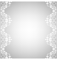 Background with white lace vector image vector image