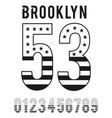 brooklyn black white textured flag usa vector image vector image