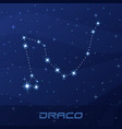 constellation draco dragon night star sky vector image vector image