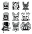 Villains French Bullldogs icons label style vector image