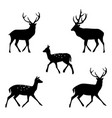 deer collection - silhouette vector image vector image