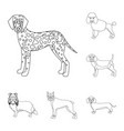 dog breeds outline icons in set collection for vector image vector image